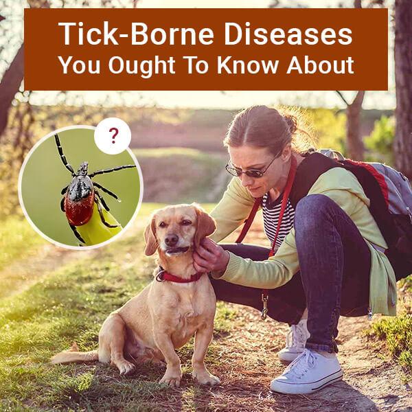 BPS-Tick-Borne-Diseases-insta